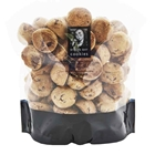 Unwrapped Baby Button Cookies 13g - Milk Choc Chunk - Byron Bay Cookies (3x1kg)