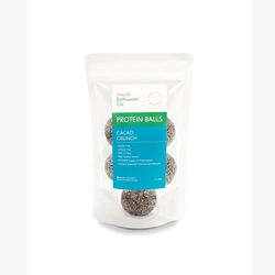 Health Enthusiast Protein Balls Samples
